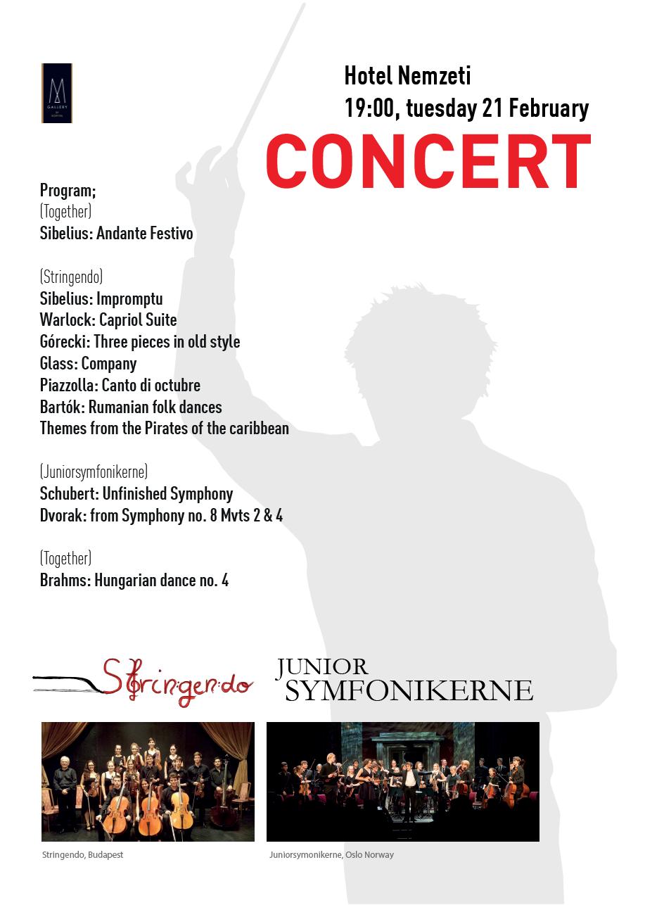 Konsert-21-feb